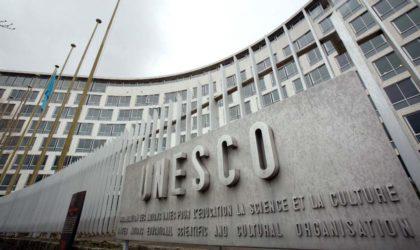 L'Algérien Toufik Hammoum reconduit à la tête du STAB de l'Unesco