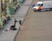 Une valise suspecte découverte près du Palais royal de Bruxelles