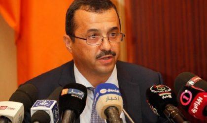 Discussions Sonelgaz-Gecol pour exporter de l'électricité en Libye
