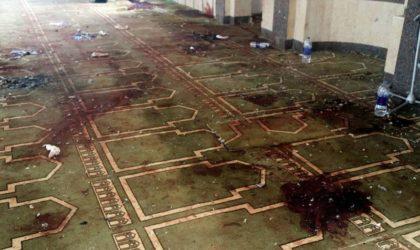Des témoins parlent de l'attentat en Egypte: le but des terroristes est lequel tuerait plus