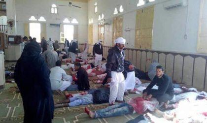 Carnage dans une mosquée dans le Sinaï égyptien : 235 morts et 125 blessés