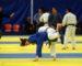 Championnat national d'Excellence de judo: 30 arbitres mobilisés pour l'évènement