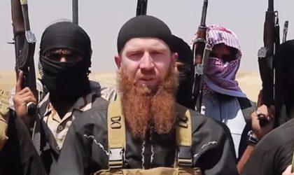 Plus de 40000 terroristes étrangers de plus de 10 pays ont activé en Syrie et en Irak