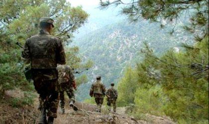Jijel: des éléments de soutien aux groupes terroristes arrêtés