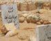 «Hizia, entre mythe et réalité» à Oran