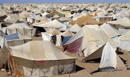 Formation des journalistes à la couverture médiatique de la crise des réfugiés dans la région Mena