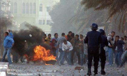 Le poignant message vidéo des jeunes du Sud aux dirigeants algériens
