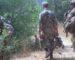 Un «dangereux» terroriste capturé à Bouira