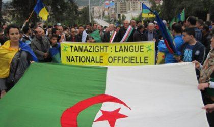 Tamazight : des partis et des syndicats demandent la promulgation d'une loi organique