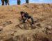 Deux grands charniers de victimes de Daech découverts à Raqqa