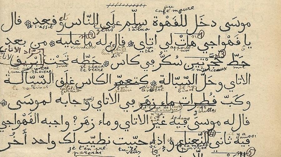 arabe tamazight