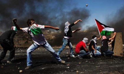 Le verdi de la liberté saura renaître des cendres des martyrs