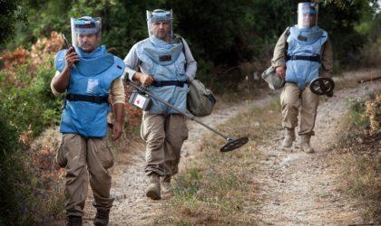 Mines antipersonnel: 8605 victimes en 2016, +150% en trois ans
