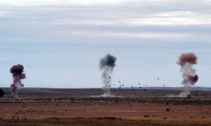 Convention d'Ottawa sur l'interdiction des mines antipersonnel: l'Algérie félicitée