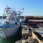 Les contrôleurs de l'Entreprise de gestion des ports et abris-pêche n'étaient pas sur les lieux