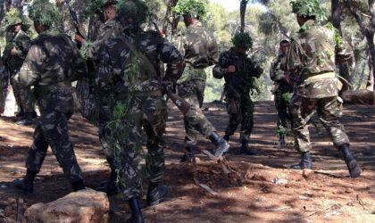 Lutte antiterroriste: destruction de 6 casemates par les forces de l'ANP à Jijel