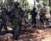 La revue El-Djeïch : «La préparation des forces de l'ANP au combat n'est pas de la démagogie»