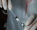 Aucun cas de grippe porcine n'a été enregistré en Algérie