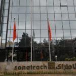 Sonatrach et Cepsa sont en train de réfléchir sur un investissement dans le domaine de l'énergie solaire