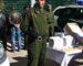 Arrestation de 65 individus et récupération de 1249 comprimés de psychotropes