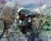 Sept terroristes abattus à Khenchela