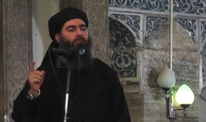 Le chef de Daech Al-Baghdadi se trouverait entre l'Algérie et le Niger