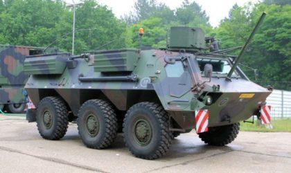 L'Algérie est le premier importateur d'armes allemandes en 2017