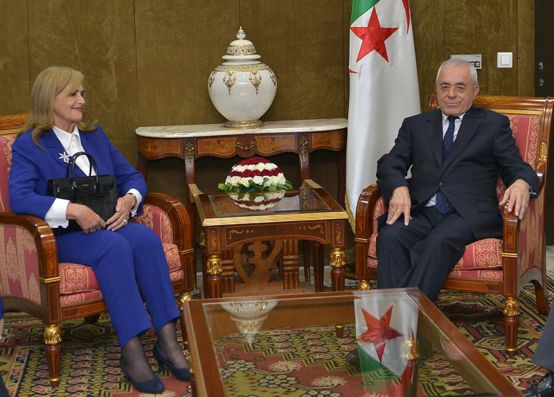 La protestation du Camra serait-elle le prélude à la levée de l'interdiction des marches à Alger ?