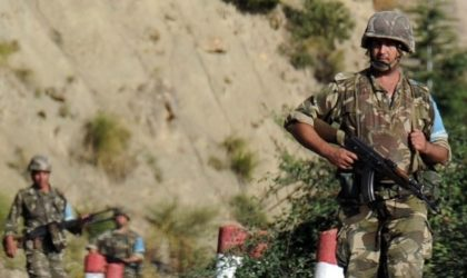 Batna: 9 éléments de soutien aux groupes terroristes arrêtés