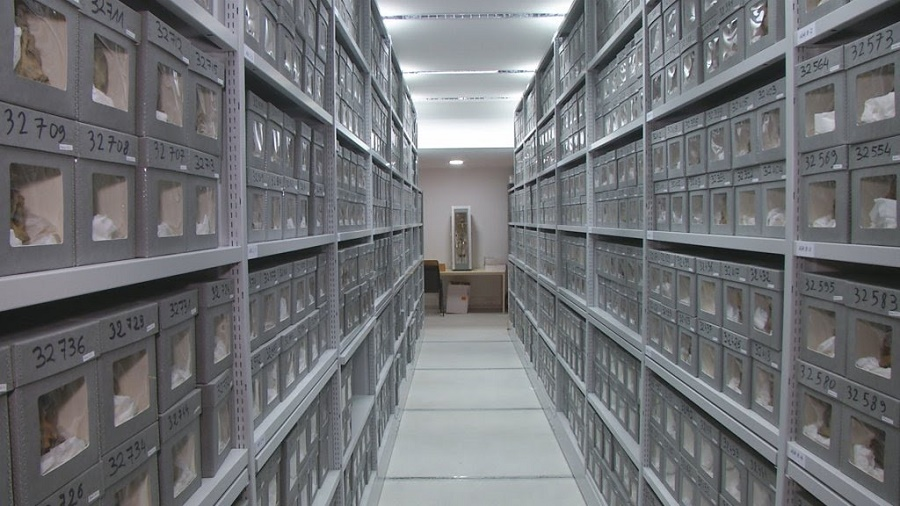 Une demande a été adressée au ministre de l'Europe et des Affaires étrangères français pour la récupération des archives de 1830 à 1962