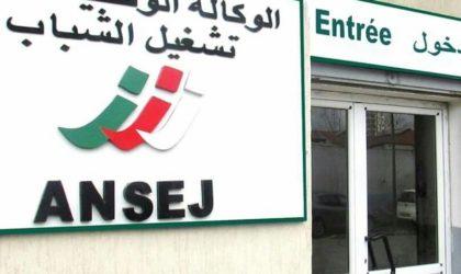 Algériens à l'étranger : des mesures pour faciliter la création de microentreprises en Algérie
