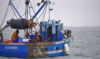 Mostaganem: des pêcheurs remontent dans leurs filets un cadavre sans tête