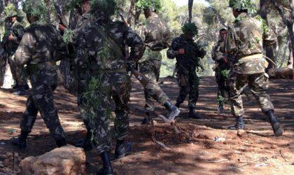 Arrestation d'un terroriste recherché à Skikda et de trois éléments de soutien à Batna