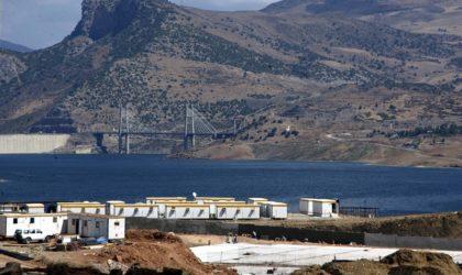 Mila: le barrage Beni Haroun, un «nouveau couloir» pour les oiseaux migrateurs