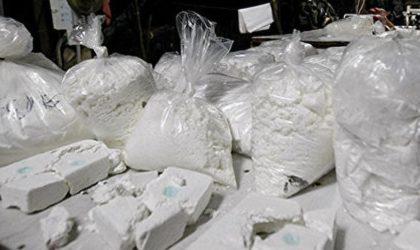Saisie de 541 kg de cocaïne au Maroc destinés à inonder l'Afrique et l'Europe