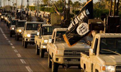 La Tunisie et le Maroc premiers pourvoyeurs de terroristes en Libye