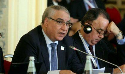 Ayadi conduira la délégation algérienne au Conseil des Nations unies pour les droits de l'Homme