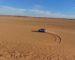 Retour sur l'enquête d'Algeriepatriotique : la grosse arnaque du tourisme local