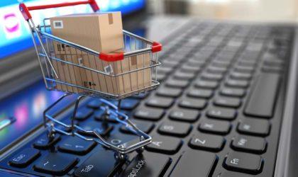 APN : présentation en plénière du projet de loi sur le commerce électronique