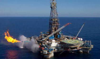 Sonatrach : des forages en offshore avant la fin de l'année
