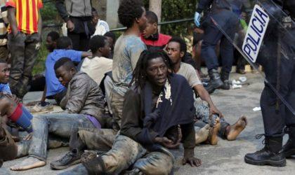 Contribution – Crise migratoire: ces réalités que l'Occident a perdu de vue