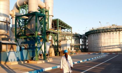 Justice sud-africaine: le Maroc n'a aucun droit sur le phosphate du Sahara Occidental