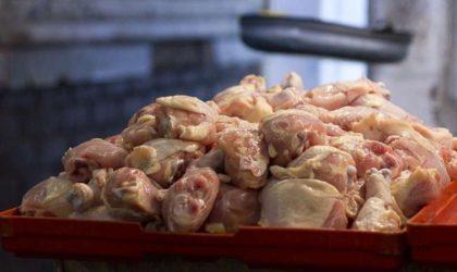 Oran: six tonnes de poulet de chair provenant de l'abattage clandestin saisies