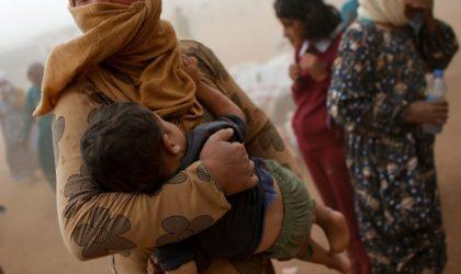 Des ONG internationales démasquées : actes sexuels contre nourriture en Syrie
