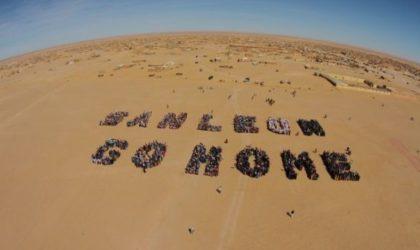 Pillage des ressources sahraouies : la communauté internationale appelée à sanctionner le Maroc