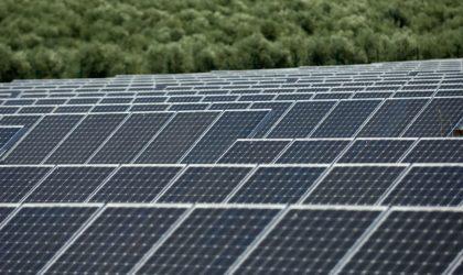 Bedoui: les écoles primaires seront équipées de panneaux solaires dans les trois ans à venir