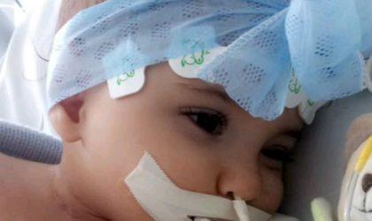 Des médecins français mettent en péril la vie d'une petite fille algérienne