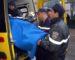Le bilan des piétons fauchés à Blida s'alourdit: 4 morts dont 2 écoliers