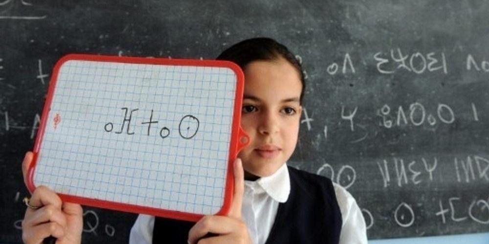 nouvelle consultation enseignement tamazight