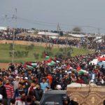 Palestine Gaza